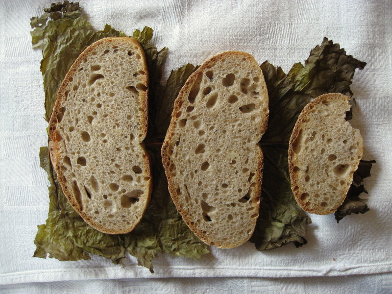 Kromki chleba leżące na liściu chrzanu