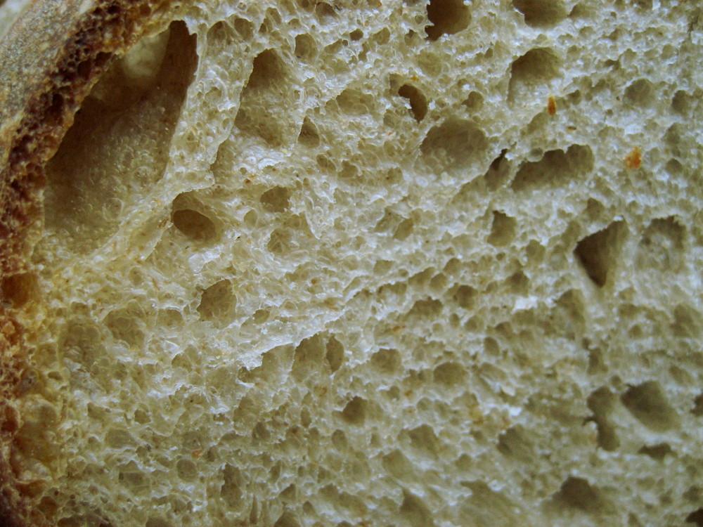 Miękisz chleba z płaskurki